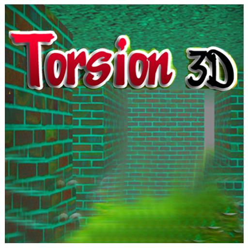 Torsion 3D